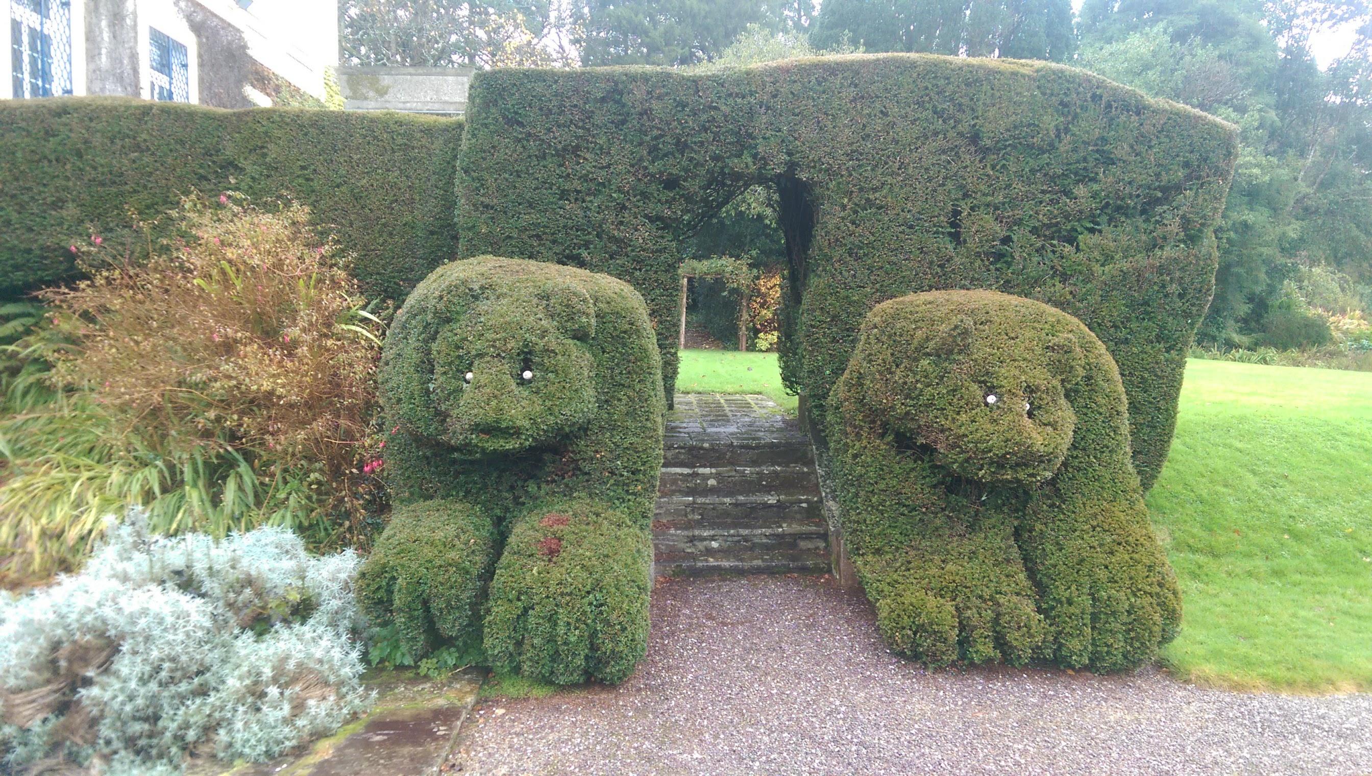 gareth austin the winter garden tourist firmus energy